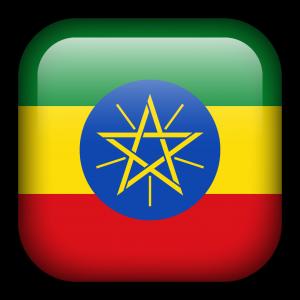Ethiopian Embassy